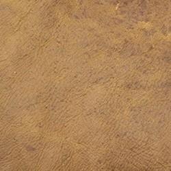 Prairie Tan