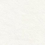 White (Contempo)