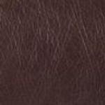 Dark Brown (New England)