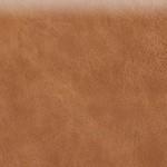 Fawn (Etna)